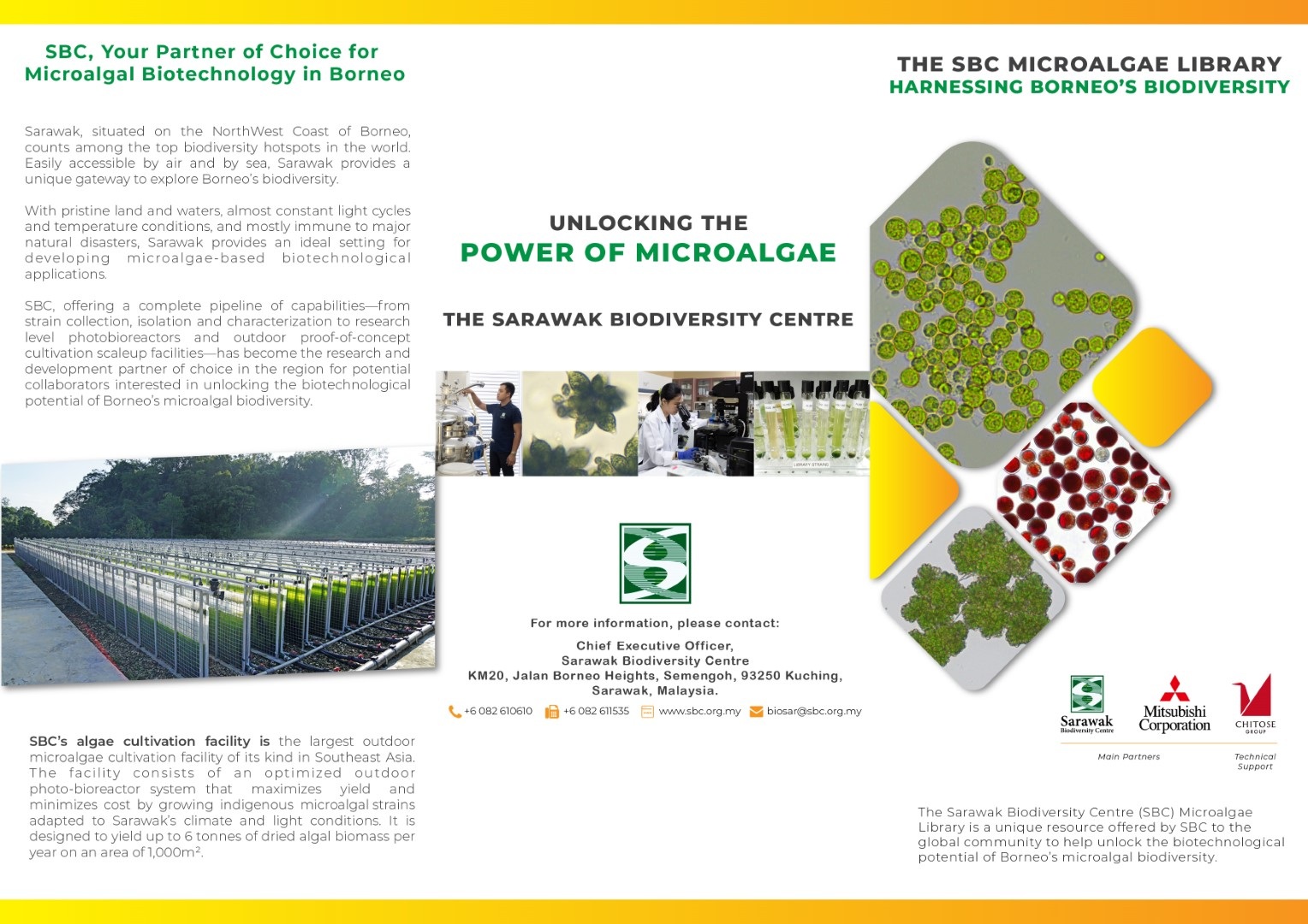 The SBC Microalgae Library