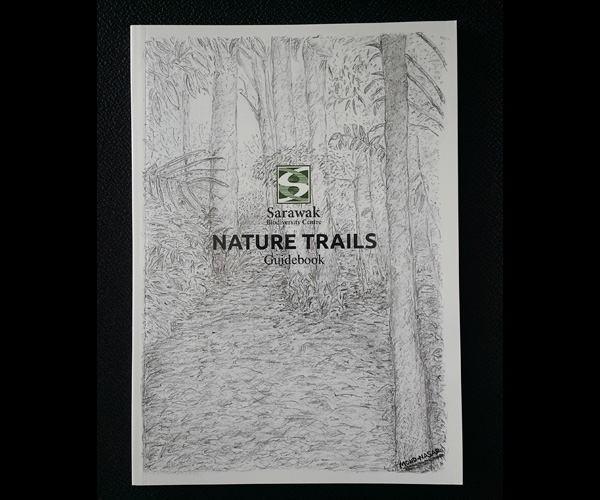 Nature Trail Sketch 1