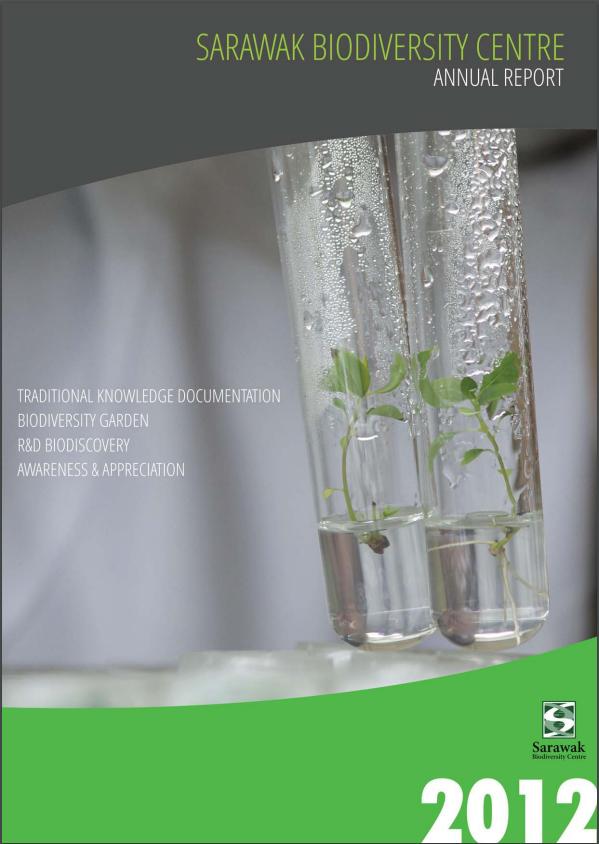 SBC Annual Report 2012