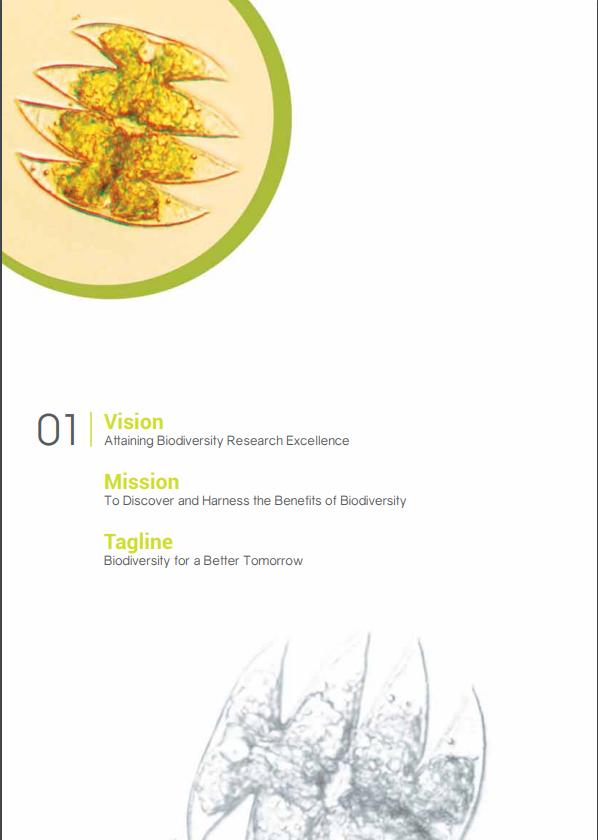SBC Annual Report 2014