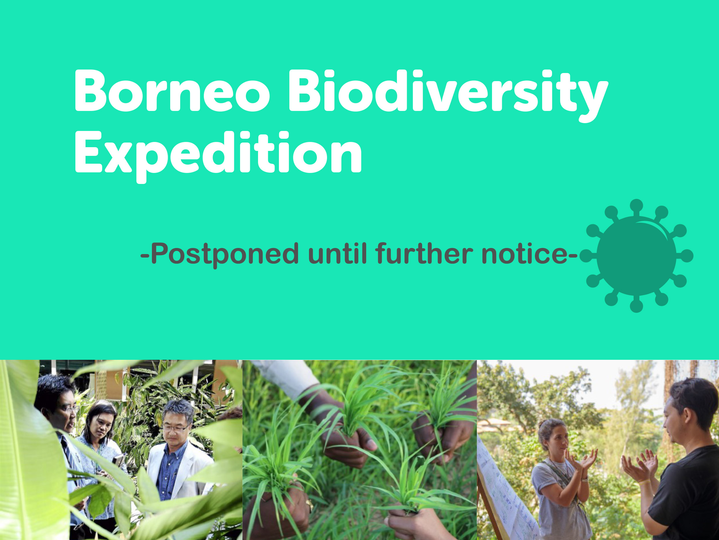 Borneo Biodiversity Expedition